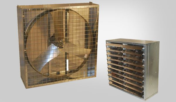 Reeves Supply Box Fans